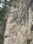 Rock Climbing Photo: Alison Coin takes down Concracktion, 5.11c  The Da...