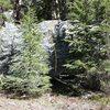Medicine Boulder North East Face Topo