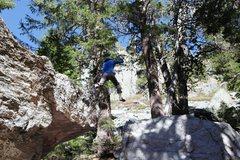 Rock Climbing Photo: The descent