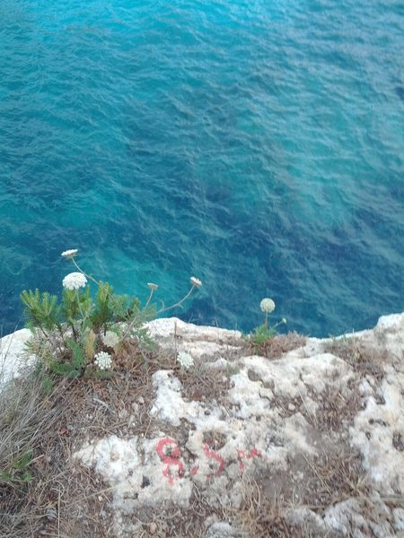 Rock Climbing Photo: One of the top-outs/jumping-off points. Says 8.5 m...