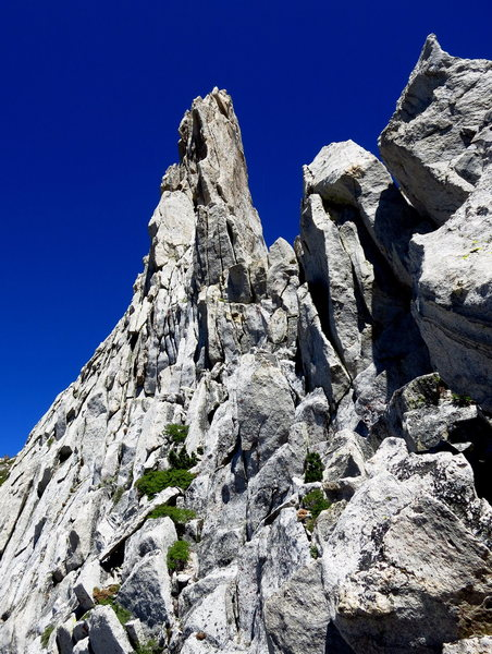 Rock Climbing Photo: 3rd class terrain along the summit ridge. P4.   Ph...