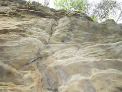 Rock Climbing Photo: Yellow Bluff, AL. Not sure of the name of this rou...