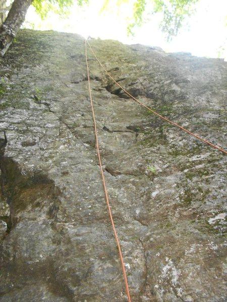 Rock Climbing Photo: Looking up Preppy's Crack