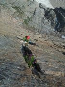 Rock Climbing Photo: The flower pitch on D7....