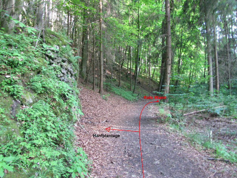 The path to the Hanfplantage is this left before the stairs in the background.