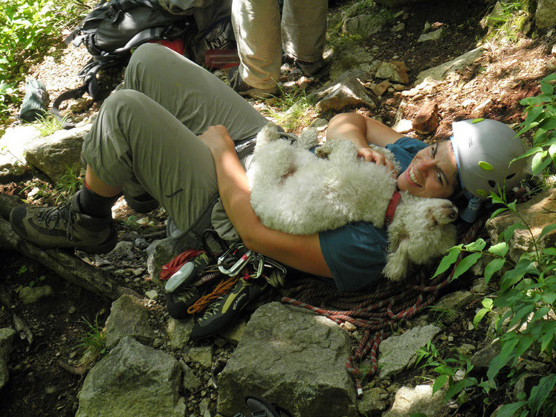 Rock Climbing Photo: Louie enjoying some human time.