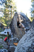 Rock Climbing Photo: just like white rastafarian amazing