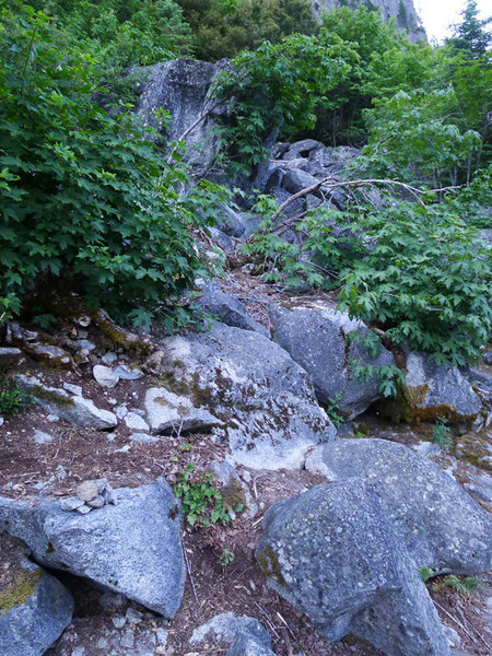 Rock Climbing Photo: climber's trail off the Sentinel main trail