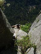 Rock Climbing Photo: top of P12