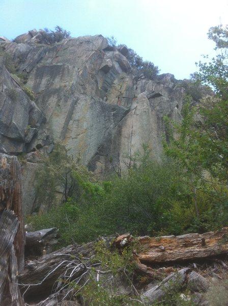 Strangler cliff
