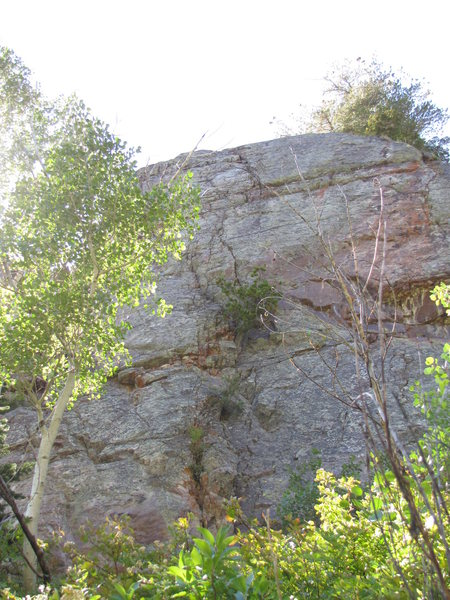 Rock Climbing Photo: Bonsai Wall and Bonsai Crack.