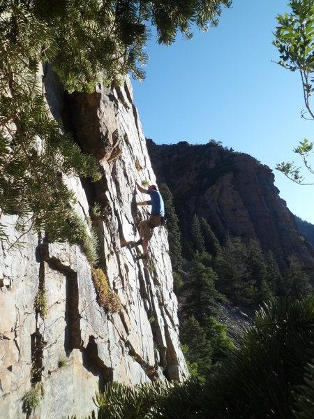 Rock Climbing Photo: Fun on Dream Slate on a summer evening.