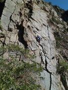 Rock Climbing Photo: Cranking a way on Dream Slate 5.10a