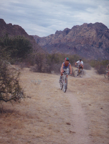 a wealth of moderate mountain bike trails and paths<br> Photo: Olaf Mitchell