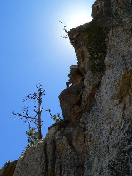 Rock Climbing Photo: MBLL