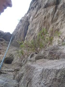 Rock Climbing Photo: Dihedral at top on rappel to clean the anchor. You...