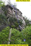 Rock Climbing Photo: Nuke The Whales Wall  Save The Wails(5.7)trad  Cro...