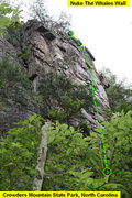 Rock Climbing Photo: Nuke The Whales Wall  Loyal Order Of The Toad(5.7)...