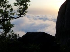 Rock Climbing Photo: sea of green changed to sea of fog in the morning ...