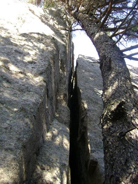 Rock Climbing Photo: Concord Crack