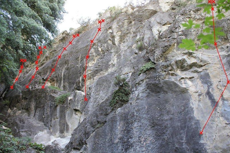 Top wall