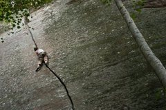 Rock Climbing Photo: Crack Attack, Indian Creek crag in the Red River G...