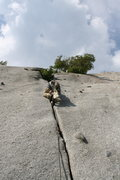 Rock Climbing Photo: bushwack crack 5.8 **