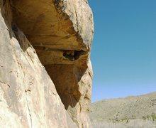 Rock Climbing Photo: More Funky than Monkey