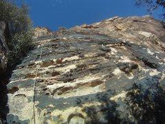 Rock Climbing Photo: The start of Birdland -