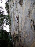 Rock Climbing Photo: #10