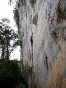 Rock Climbing Photo: eric coffman leading Vina Kulafu #11