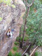 Rock Climbing Photo: Colin Cox crushing it.