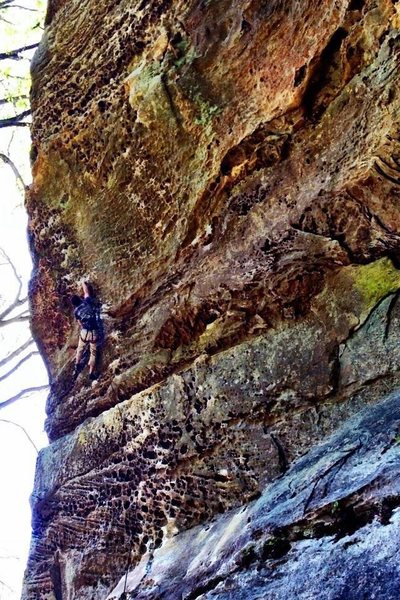 Rock Climbing Photo: Twinkie 5.12a at the RRG