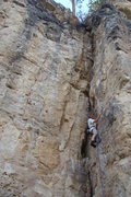 Rock Climbing Photo: The Roach, 5.10a  The premier warm-up at The Danks...