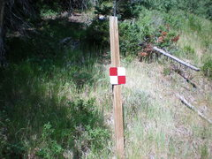 Rock Climbing Photo: sign to mark trail, just west of dog lake trail he...