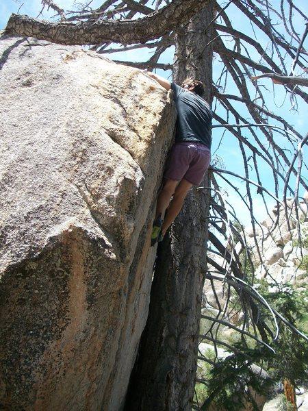 Rock Climbing Photo: Richard Robinson topping out Memento Mori on the D...