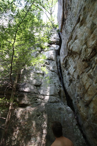 Rock Climbing Photo: View from the Bottom of No Sign of Intelligent Lif...