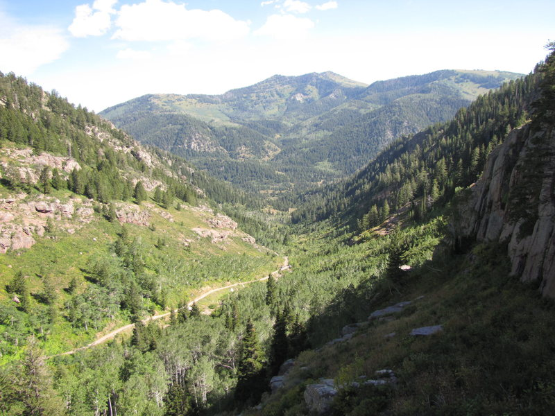 Rock Climbing Photo: Looking south down marryellens gulch from the nort...