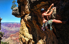 Rock Climbing Photo: bright angel wall, grand canyon