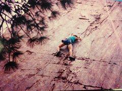 Rock Climbing Photo: Laura Climbing in Denver