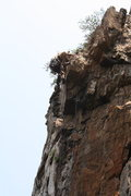 Rock Climbing Photo: Nuke The Whales Wall  Playing An Eliminate(5.10-)t...