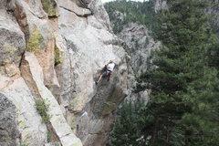 Rock Climbing Photo: Arielle Danielson - Animal Riots Activist