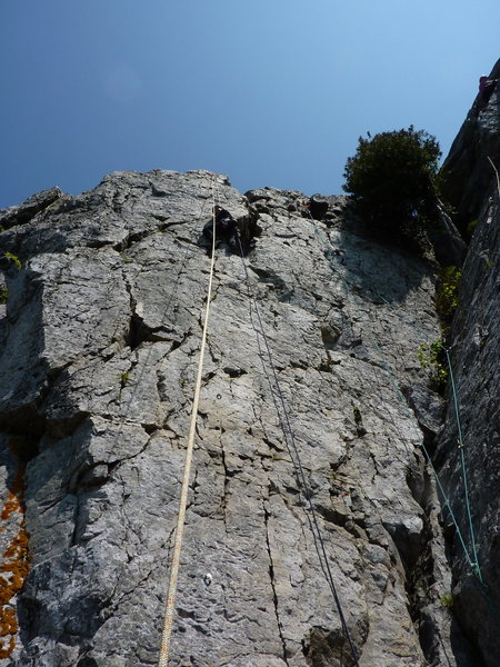 Rock Climbing Photo: D top-roping Cassonade.