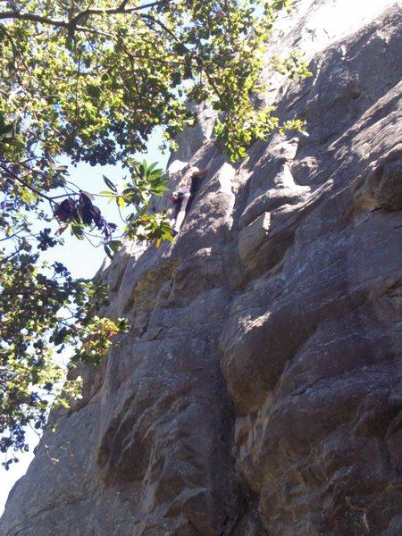 Climbing Orangahang at San Ysidro