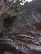 Rock Climbing Photo: Upper section of Cleptomania