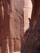 Rock Climbing Photo: Logan Berndt leading Working Class Hero.