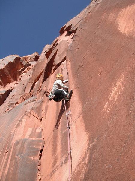 Rock Climbing Photo: Coyne Crack Simulator