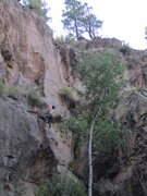 Rock Climbing Photo: Brilliant climbing up to this point. Above is the ...