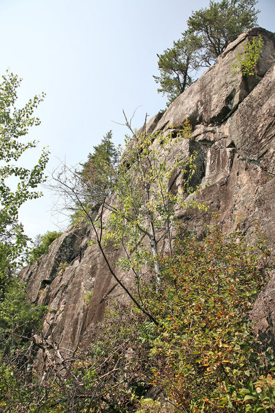 Rock Climbing Photo: Another shot of the tall cliff that has potential ...