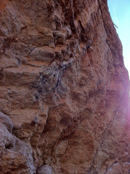 Rock Climbing Photo: From the bottom.
